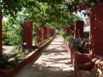Caminho lateral ao jardim