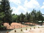 Campi da tennis immersi nella pineta