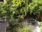 Garden north