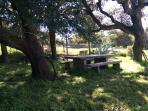 colazione sotto le quercie