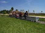 parque del trenet, a 50 metros, paseos en tren miniatura los domingos