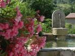 La fontaine de l'accueil et le laurier rose