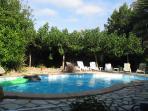 8X4 metre pool