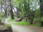 Saltburn Woodland Walk