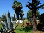 Garden Villa Birgi