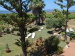 Garden of Villa Birgi