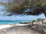 Coast Hadicurari Closeby