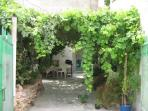 Vine and wisteria covered patio.Front