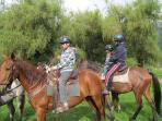 Enjoy horseback riding through the many nature-filled trails throughout Mindo!