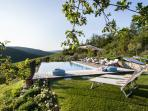 Infinity pool amongst olive groves