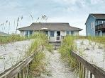 Turtle Watch - Enchanting Pet and Family Friendly Oceanfront Gem