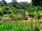 Ventnor Botanical Gardens