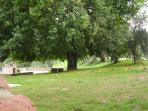 the barbeque area near the ancient mulberry-tree