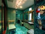 Bathroom master bedroom 1