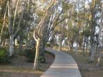paseo. de madera en zona campings.
