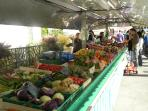 Fresh fruit and vegetables are a norm at this stall at Langeais market each Sunday