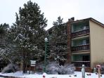 The Wren Building - Just 1.5 Blocks from the Slopes!  Pull behind for private off street parking!