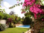 The villa is ideal for a summer holiday or a winter break away from the north european wet and cold