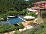 swimming pool and ponds