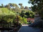 Walks in Monchique
