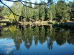 Emerald Lake is the most beautiful area for walks, picnics and paddle boats via Puffing Billy.