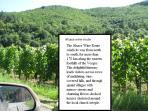 Gateway to Alsace vineyards