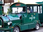 The kids love the hop on & hop off train around the resort.