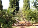 in 3 acres private gated garden