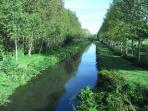 Local canal - beautiful walks, wildlife & fishing