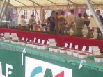 Samer Strawberry Festival and Brocante every June