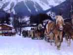 Christmas sleigh ride on the Dachstein