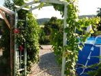 Through roses and vine arch into pool, sunbathing garden with lafluma loungers and eating area.