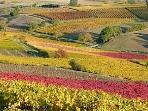 Fields of gold and red on the doorstep in Autumn WOW! Take a break in October and enjoy the colors.