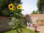 South facing, private walled garden, safe & secure for child or dog. Ramp to back door.