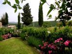 Exlusive garden