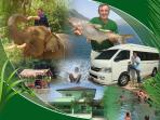 Accommodation & Transport & Tours global concept available to guests