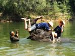 Bathing with elephants in the River Kwai