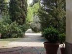Entrance gravel driveway