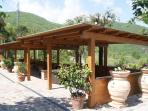 Open space on Chianti hills