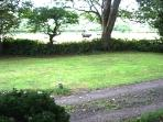 Private Driveway  approx.; 400yds. to road  insuring peace and tranquillity