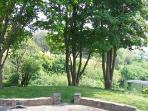 Wooded garden to the front