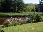 The private  Pond Garden - a truly tranquil retreat