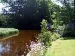 The private Pond Garden - Take in the wildlife