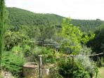 View over the back garden and hillside