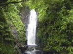 Cranny Falls in Carnlough