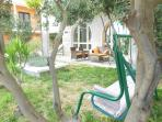 under olive tree