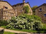 Borgo di Vagli