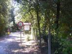 ZONA BOSCHIVA RISERVA NATURALE DEL LIDO DI VOLANO -CORPO FORESTALE-