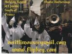 Free postcards of Limoux Carnaval
