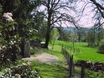 Back fields in early springtime